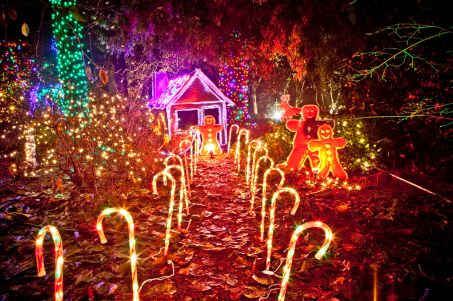 christmas-light-display-of-gingerbread-house-vandusen-botanical-garden-vancouver-british-columbia-canada-128084682-58f4c8c33df78cd3fc192cf5